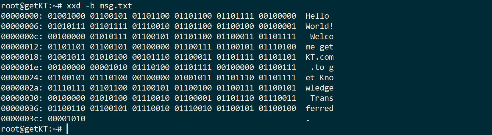 xxd -b command to binary digit dump content of file